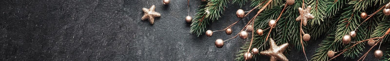 Christmas Lh Banner